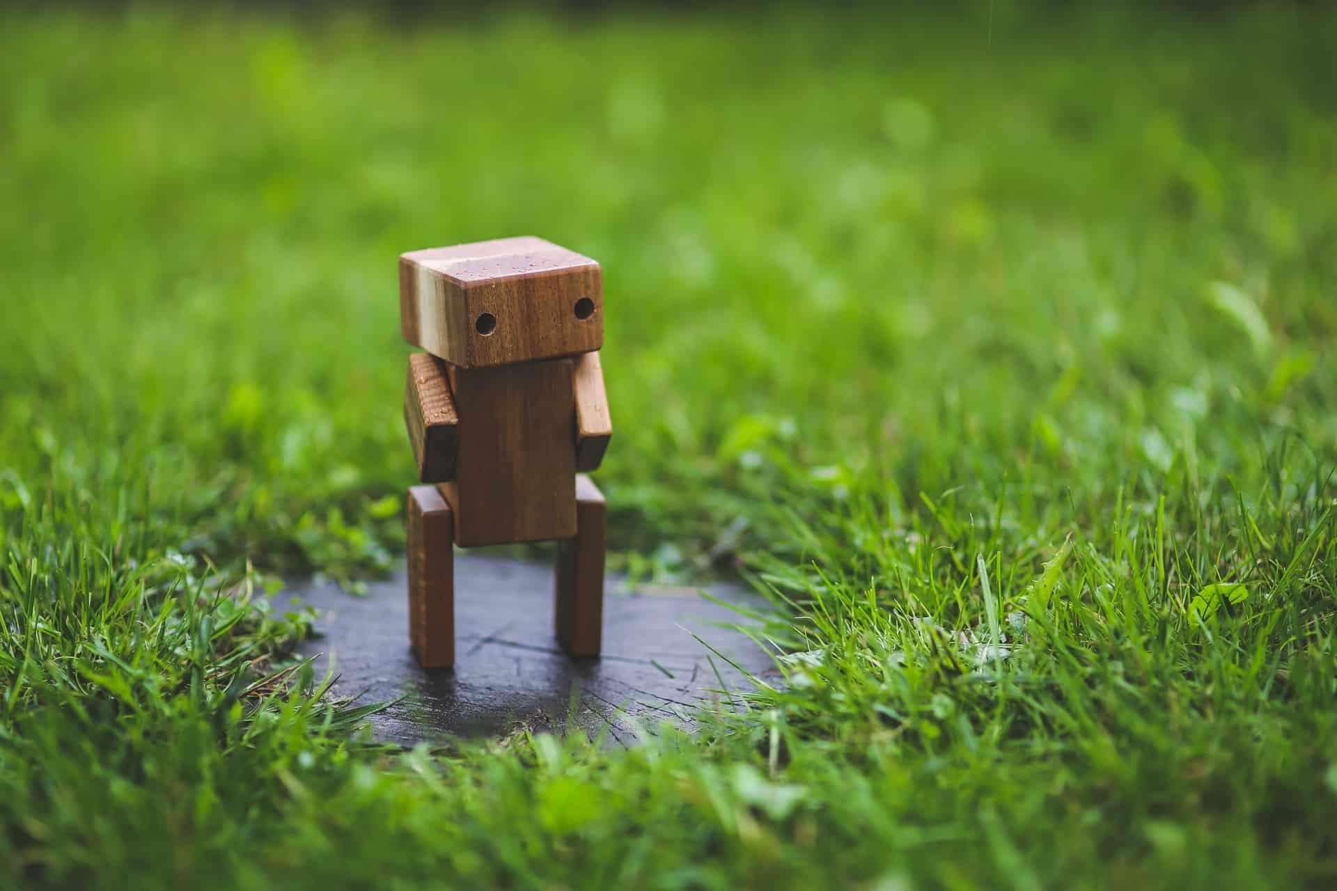 Little Toy Robot