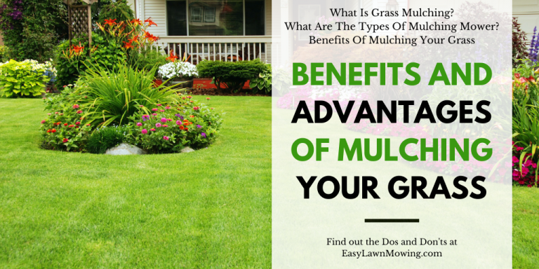 Benefits And Advantages Of Mulching Your Grass