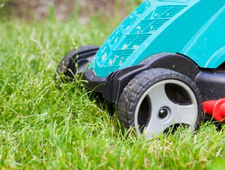Best Electric Grass Mulching Mower