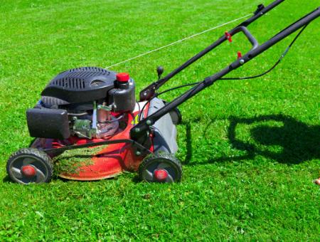 Best Grass Mulching Mowers