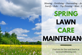 Spring Lawn Care Maintenance – What You Need to do