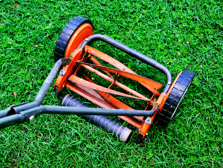 What To Look For In A Push Reel Mower