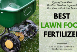Best Lawn Food Fertilizer