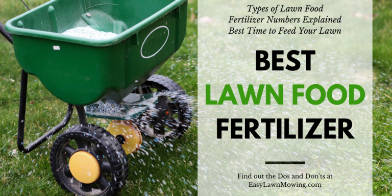 Best Lawn Food Fertilizer